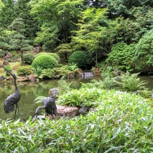 Reflecting Pond, Japanese Garden, Portland