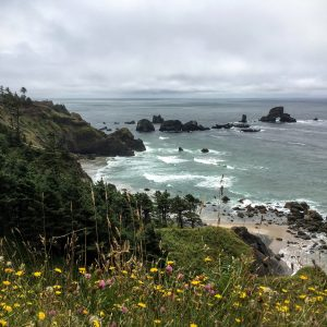 Oregon Coast, Ecola State Park
