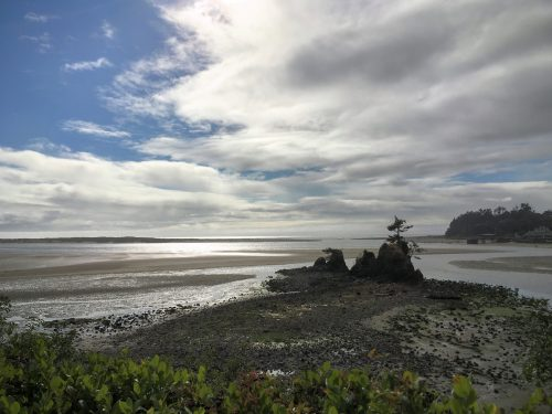 Low Tide, Oregon Coast