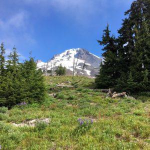 Mt. Hood, Timberline Lodge